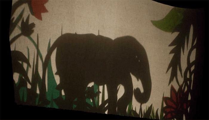 The shadow of an elephant.