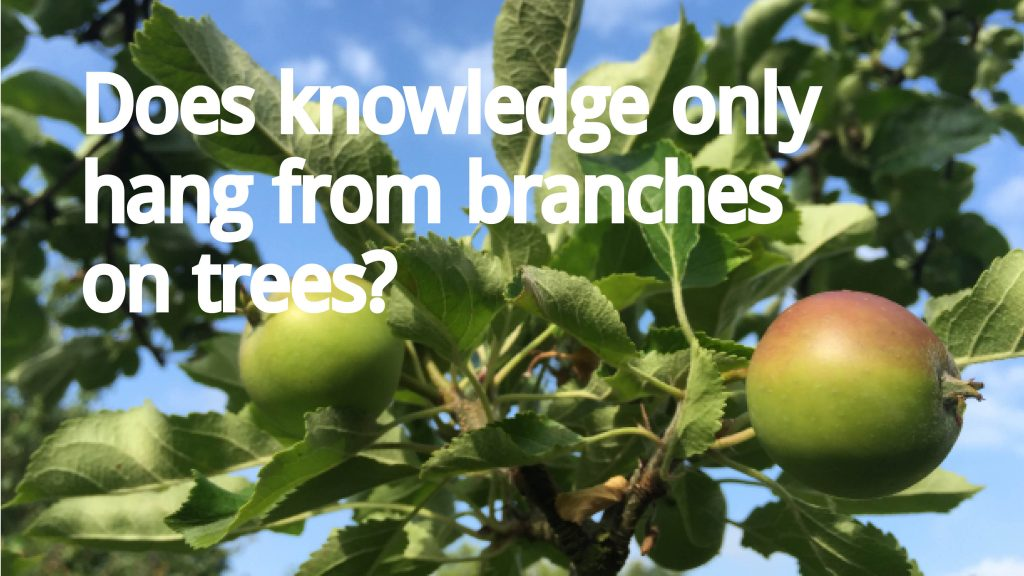 An apple tree - Does knowledge only from from branches and trees?